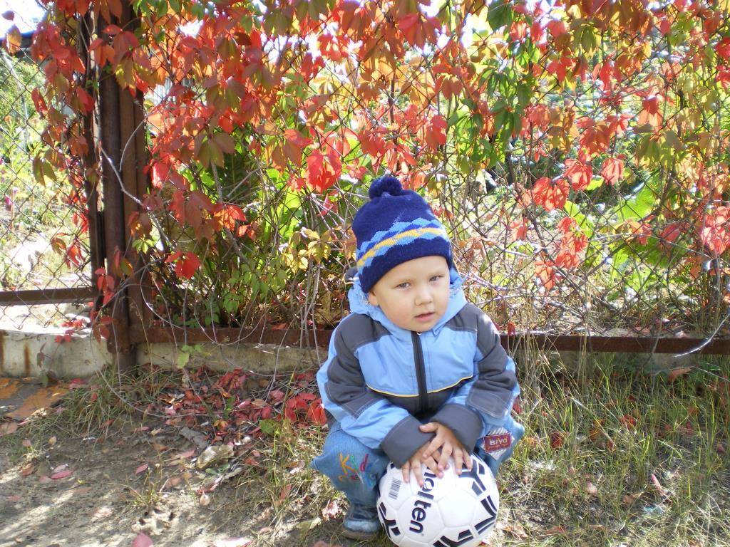 Осенний сезон. Краски осени