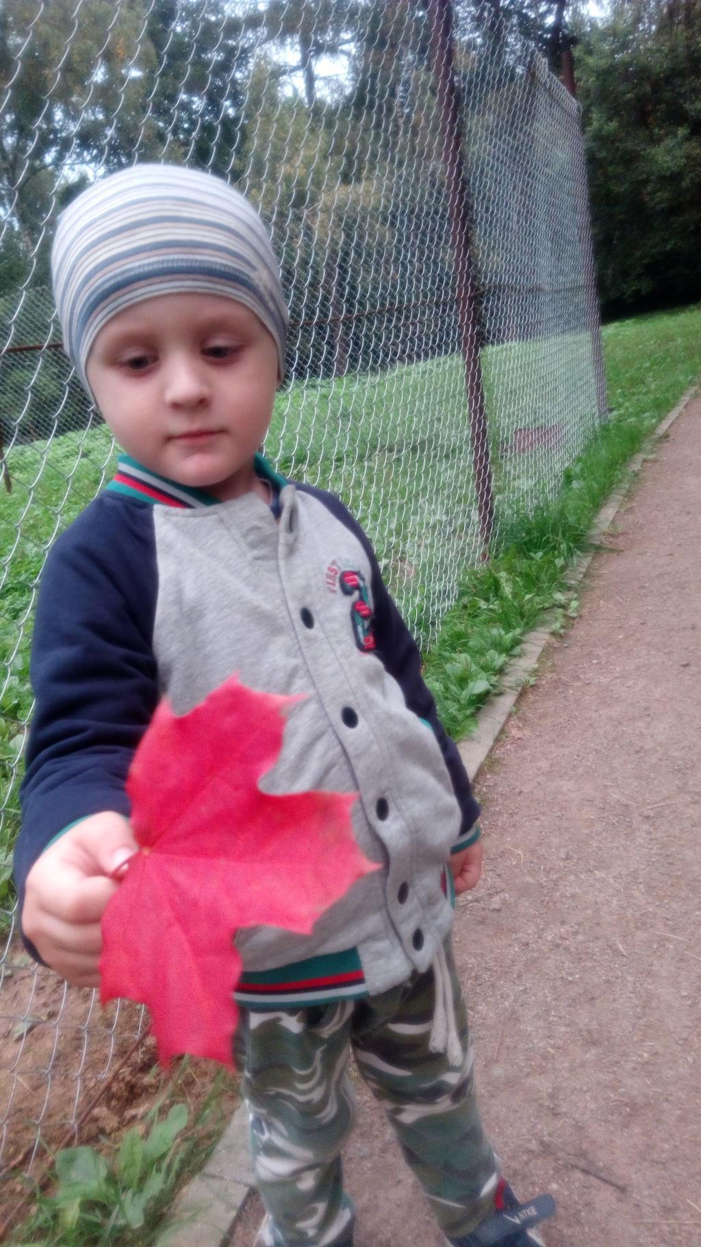 Красивый осенний лист. Осень пришла!красотища. Краски осени