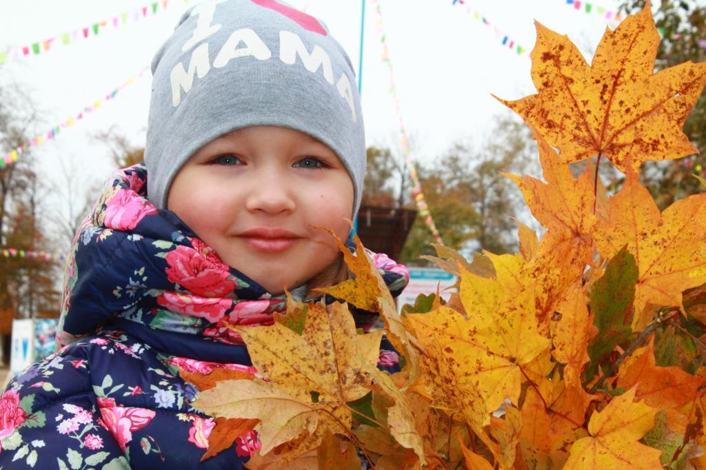 Листья жёлтые. Краски осени