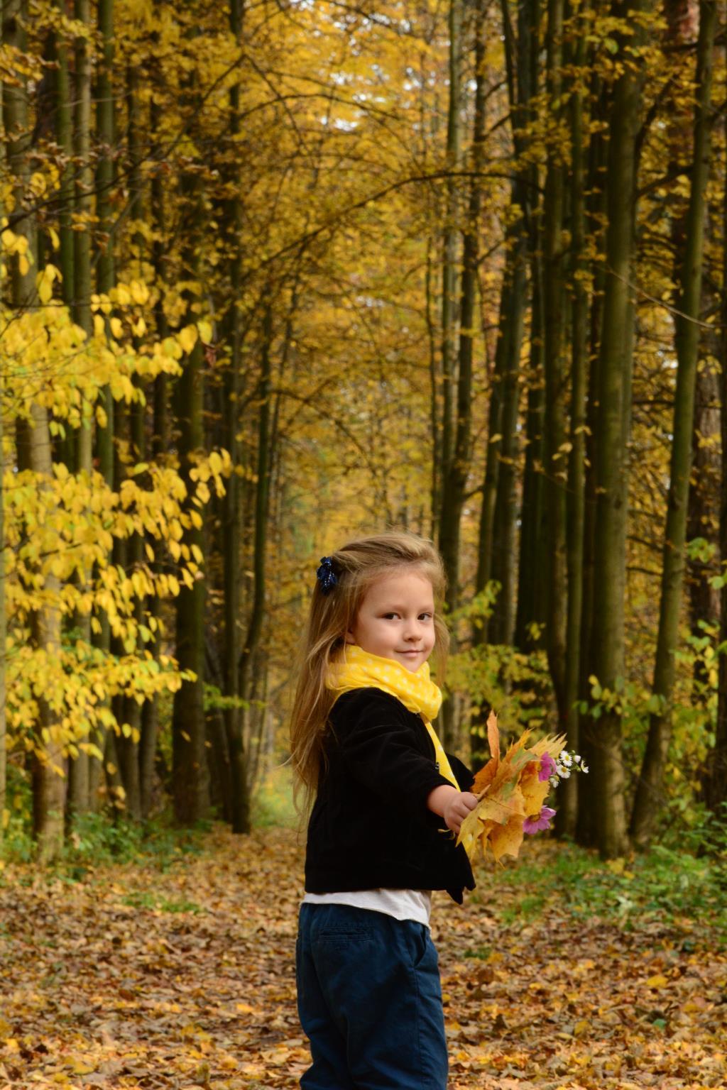 Запах и краски Осени....... Краски осени