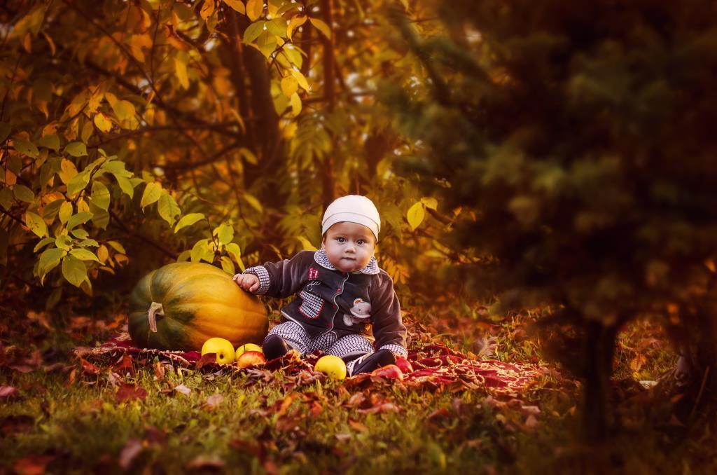 Первая осень. Краски осени