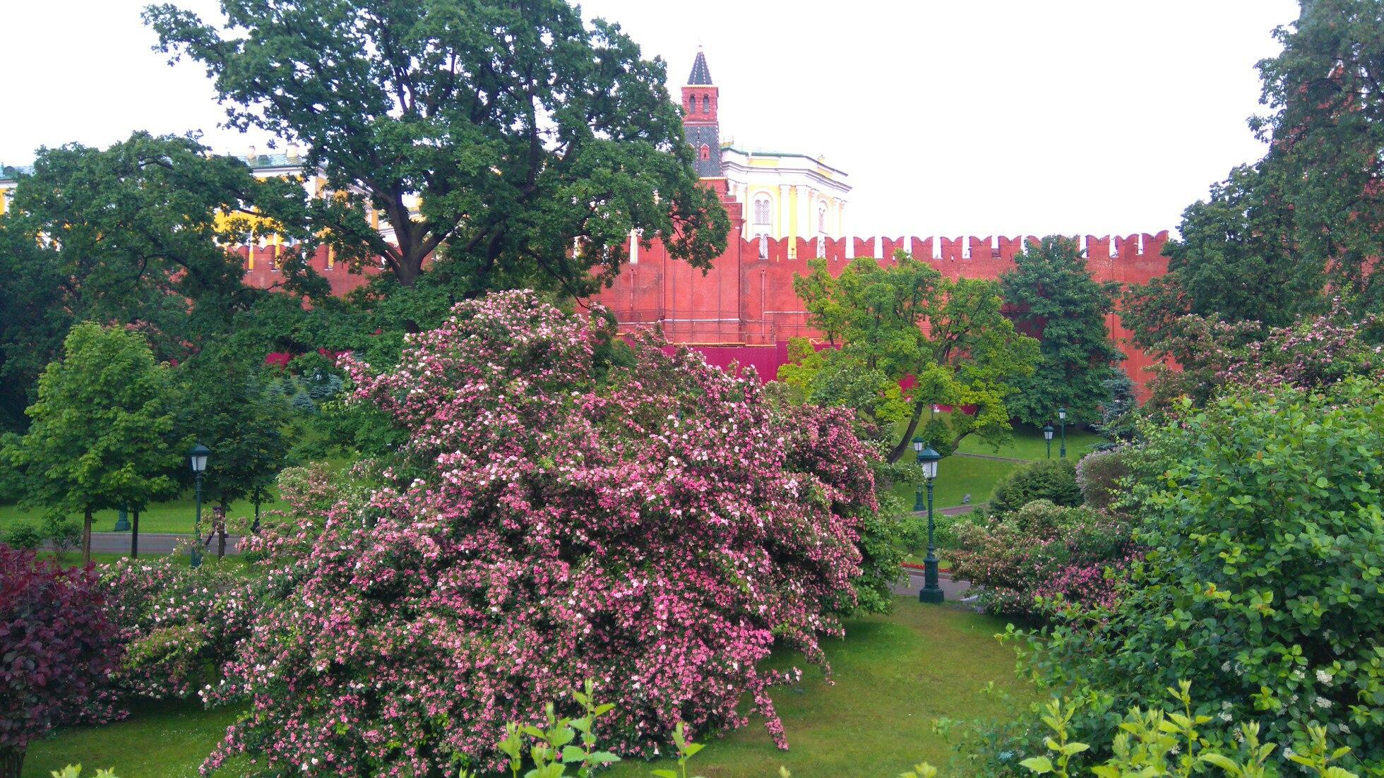 У стен Кремля. Блиц: Москва