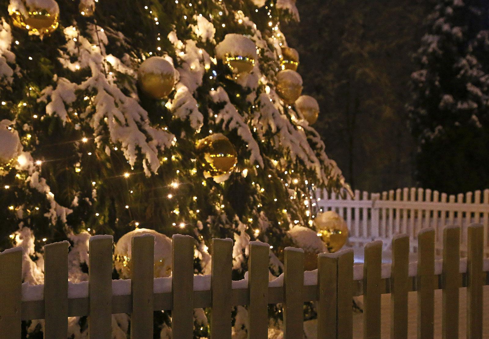 А ночью возле ёлки... ;). Блиц: новогодняя елка