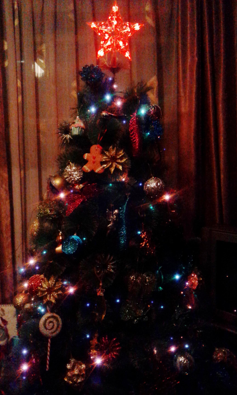 Моя новогодняя красавица. Блиц: новогодняя елка