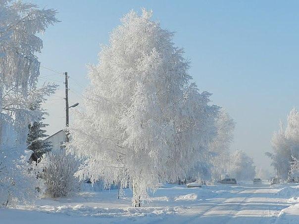 конкурс 'Блиц: снежная зима'. Блиц: снежная зима