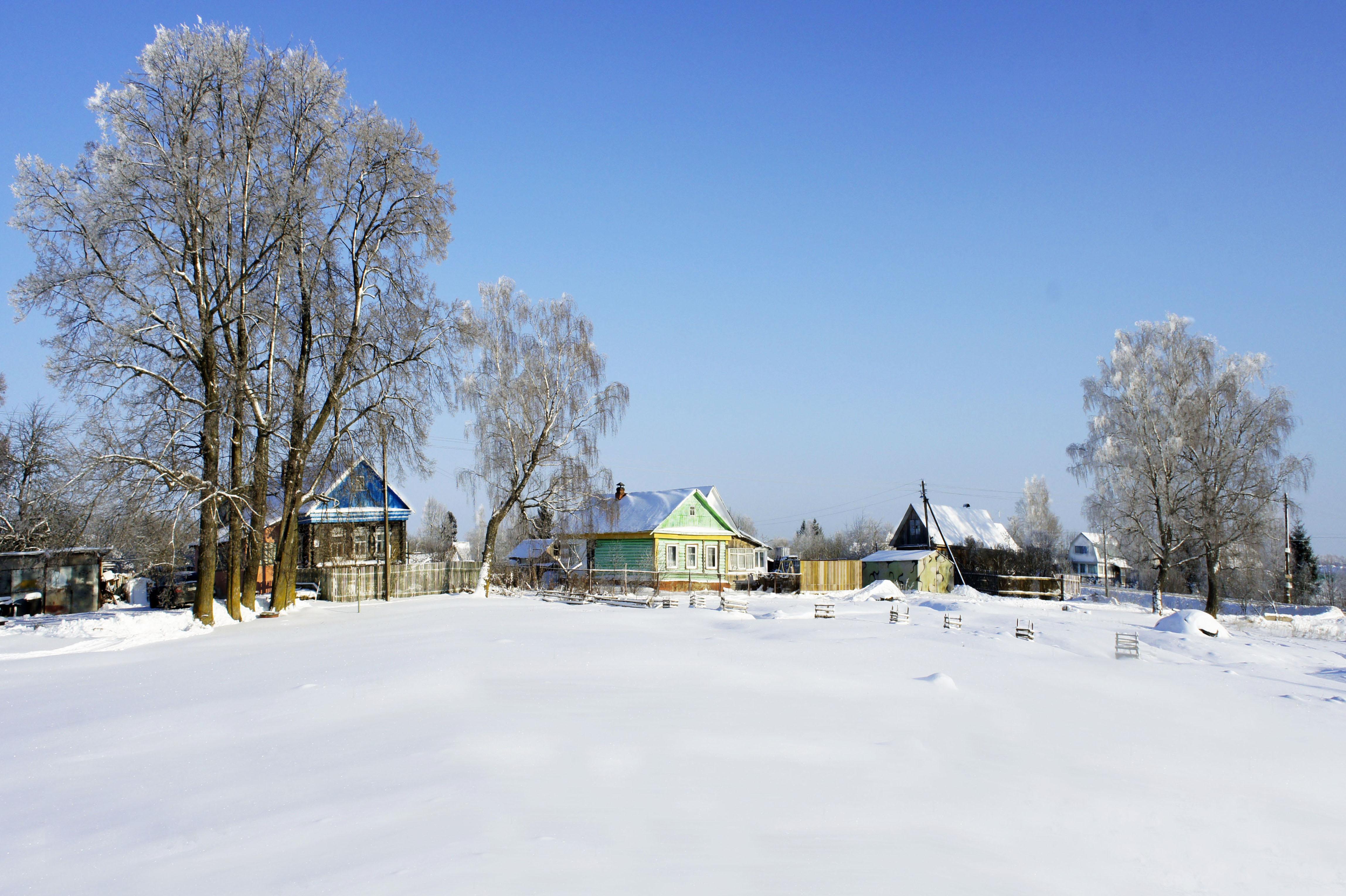 Январь. Блиц: снежная зима