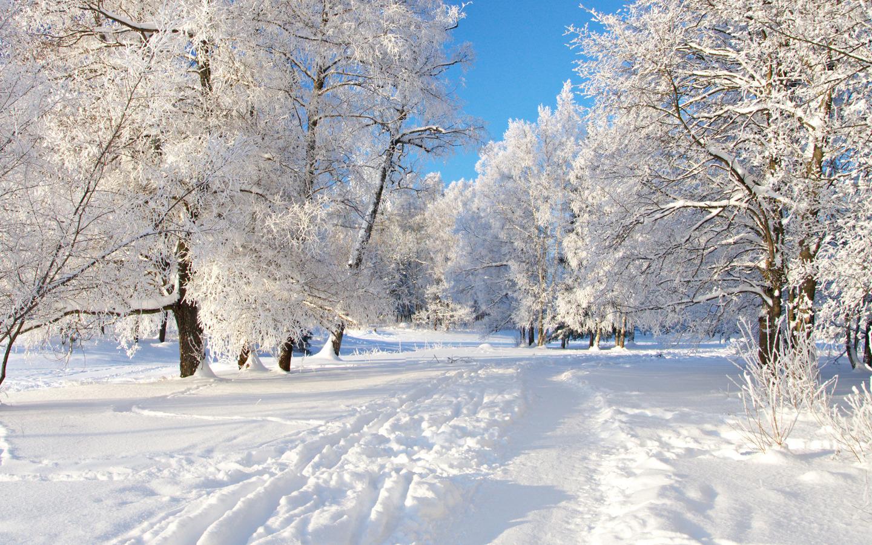 зима. Блиц: снежная зима