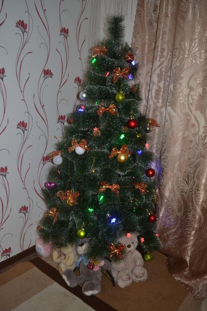 'Наша елка высока, достает до потолка'. Блиц: новогодняя елка