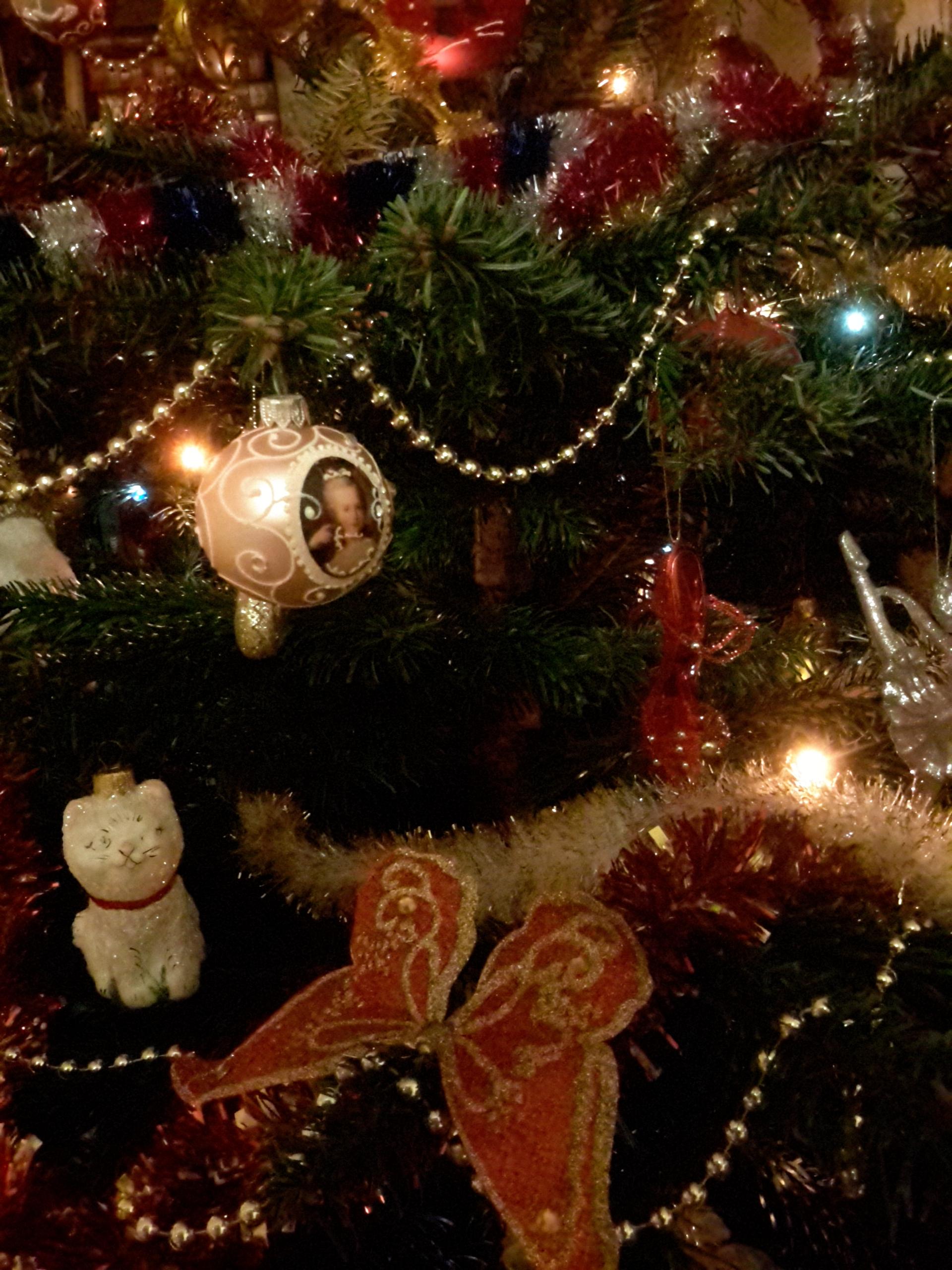 Елочка острые пряные иголочки. Блиц: новогодняя елка