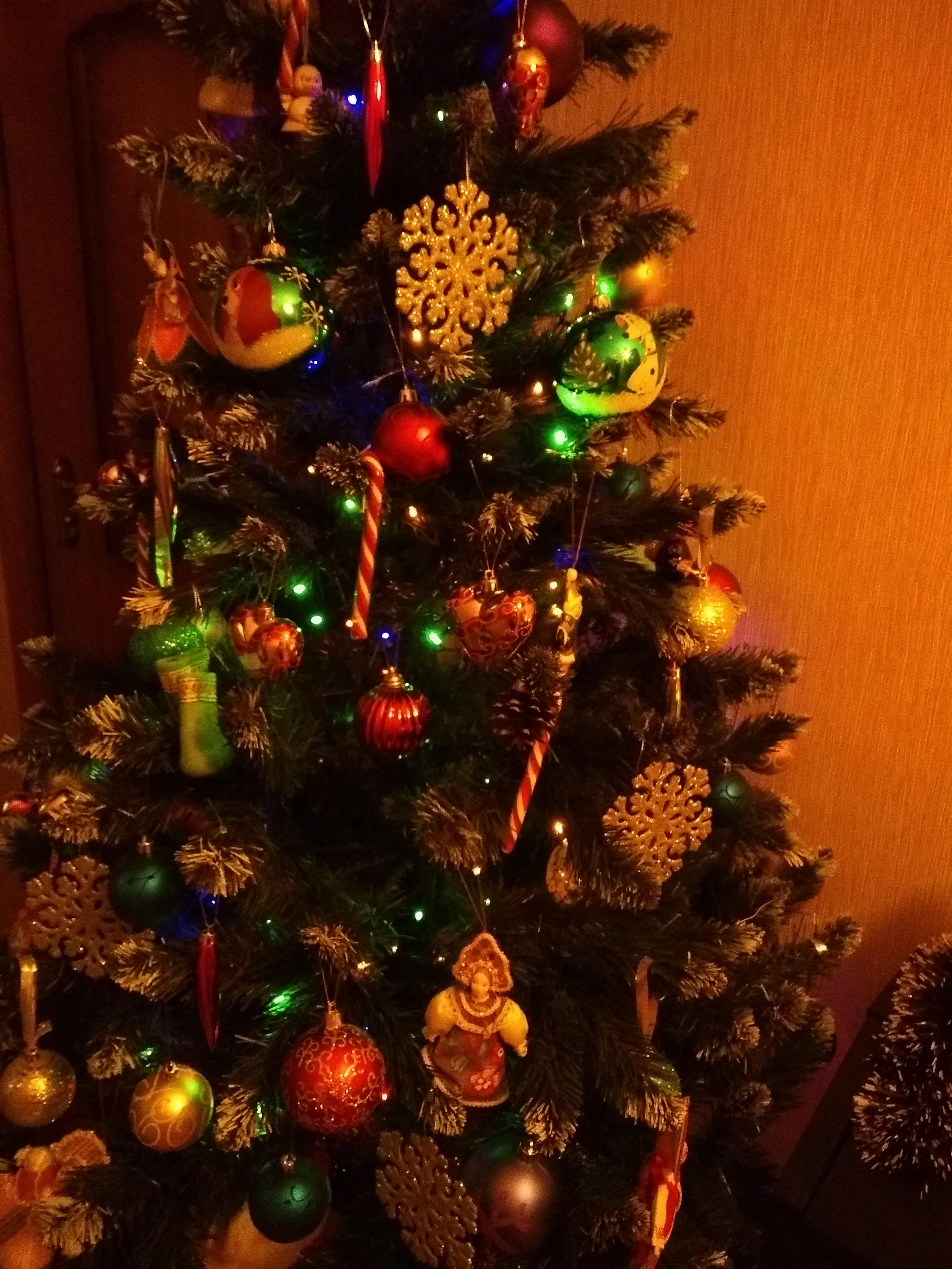 Елочка. Блиц: новогодняя елка