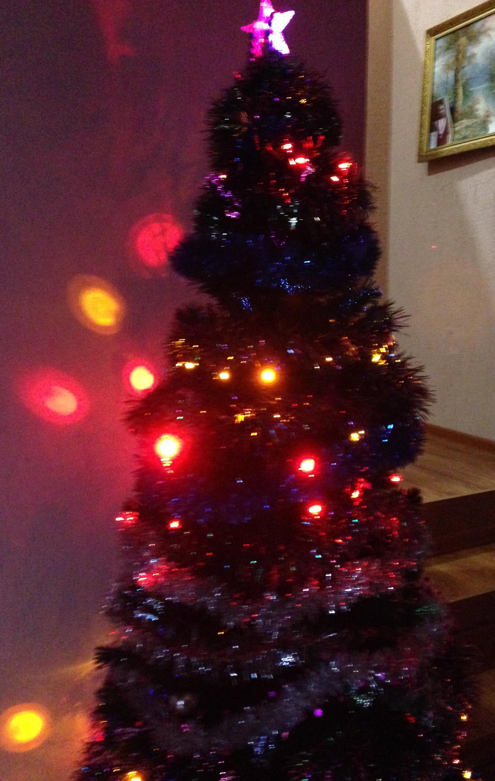 С Новым годом!🎄 Ура!. Блиц: новогодняя елка