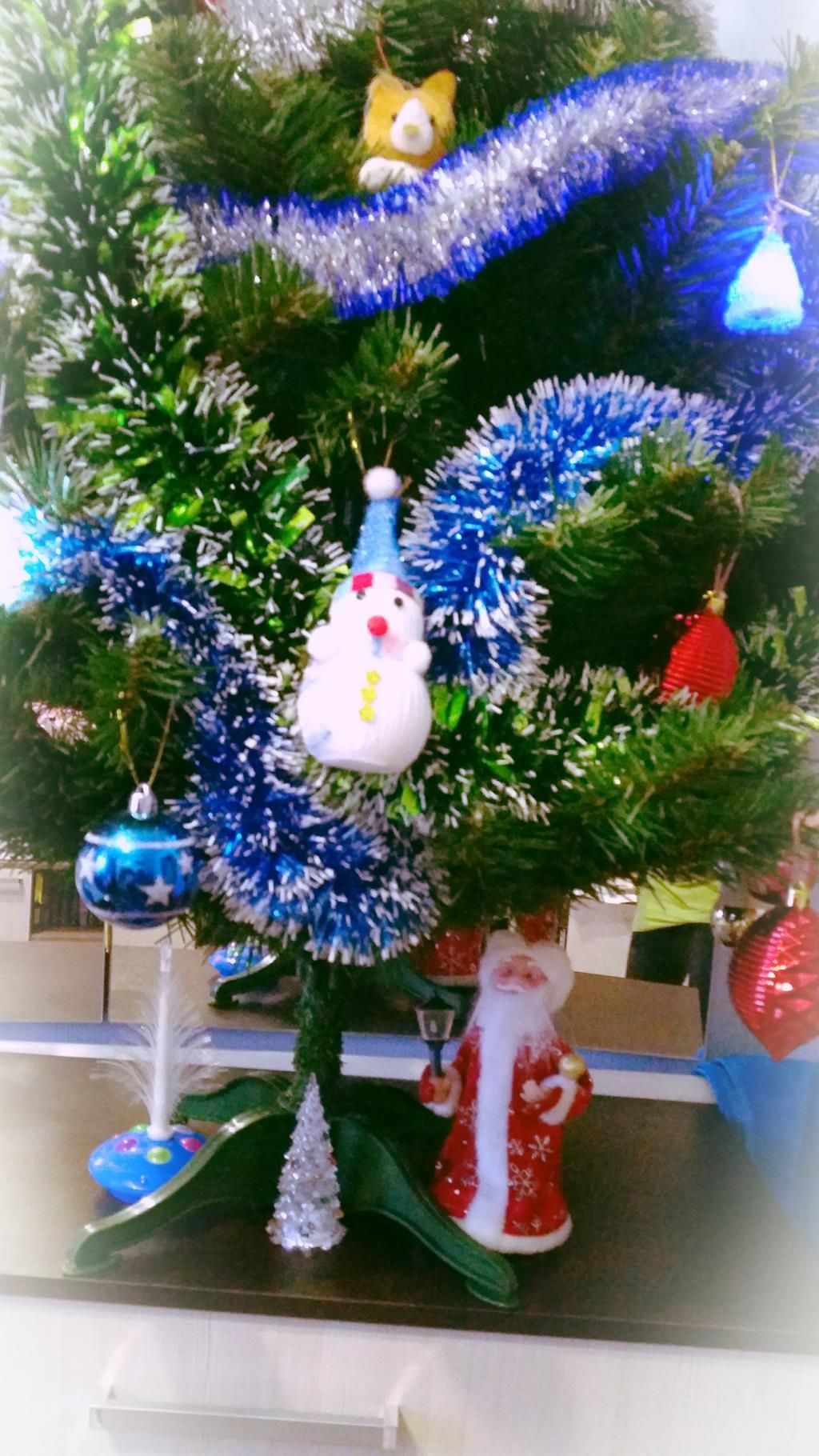 Маленькая елочка. Блиц: новогодняя елка
