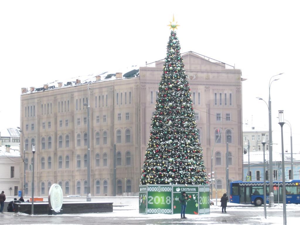 из всех -эта самая красивая!!!!. Блиц: новогодняя елка
