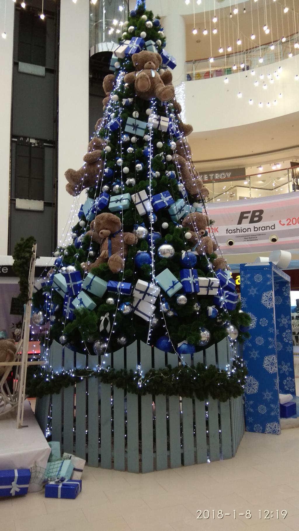 Ёлочка мечты!!!. Блиц: новогодняя елка