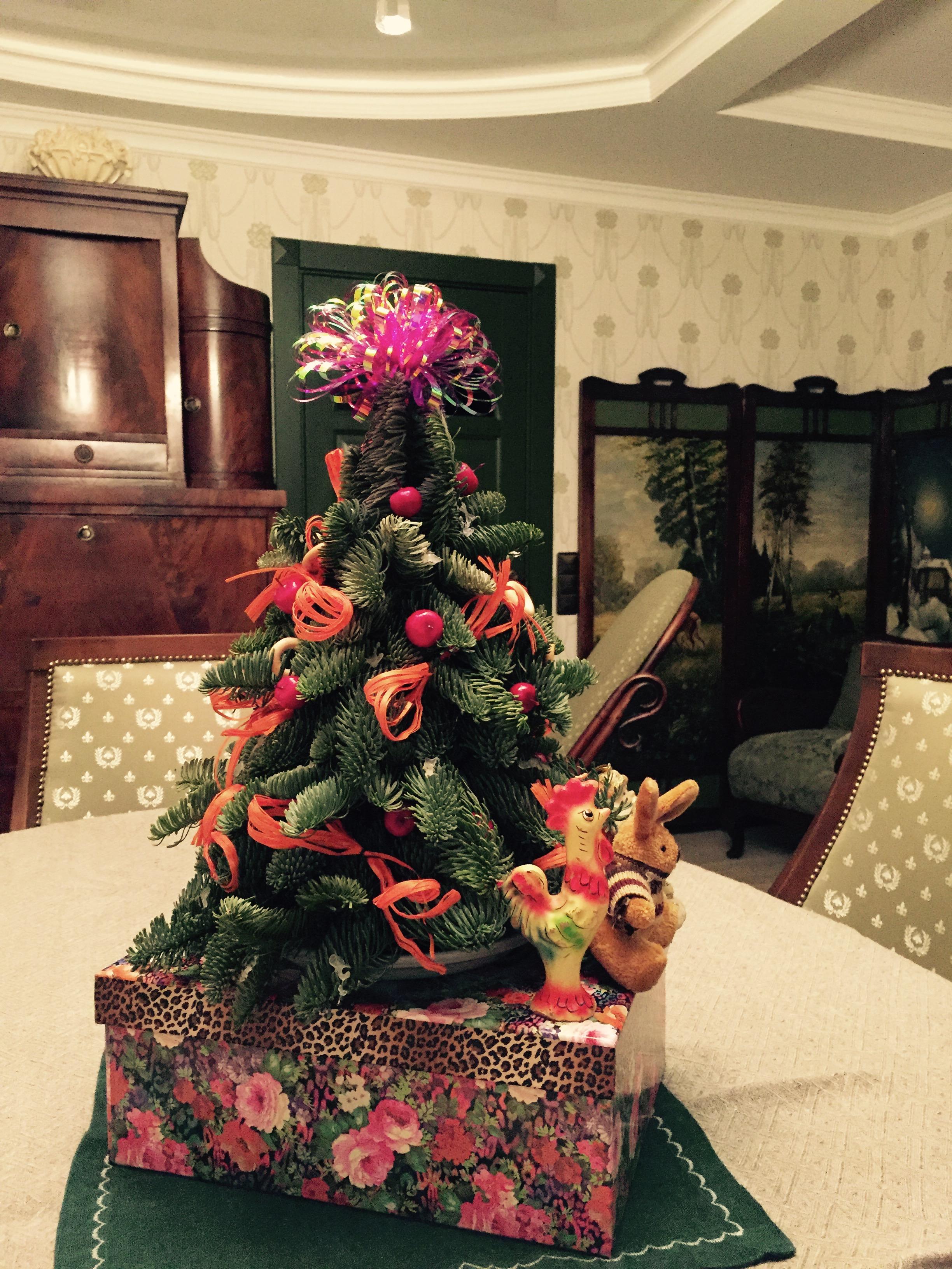 Новогодние праздники на даче . Блиц: новогодняя елка