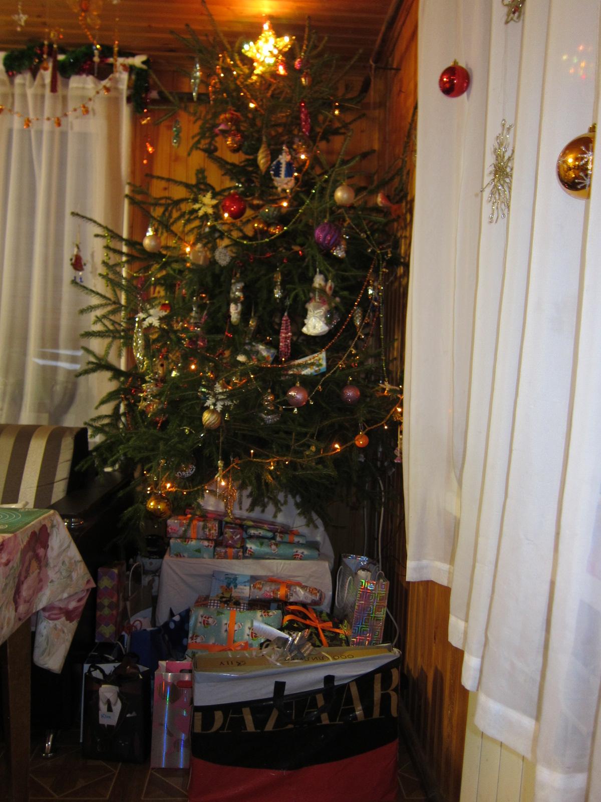 Ёлочка, дары раздающая. Блиц: новогодняя елка