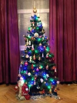 Наша ёлочка. Блиц: новогодняя елка