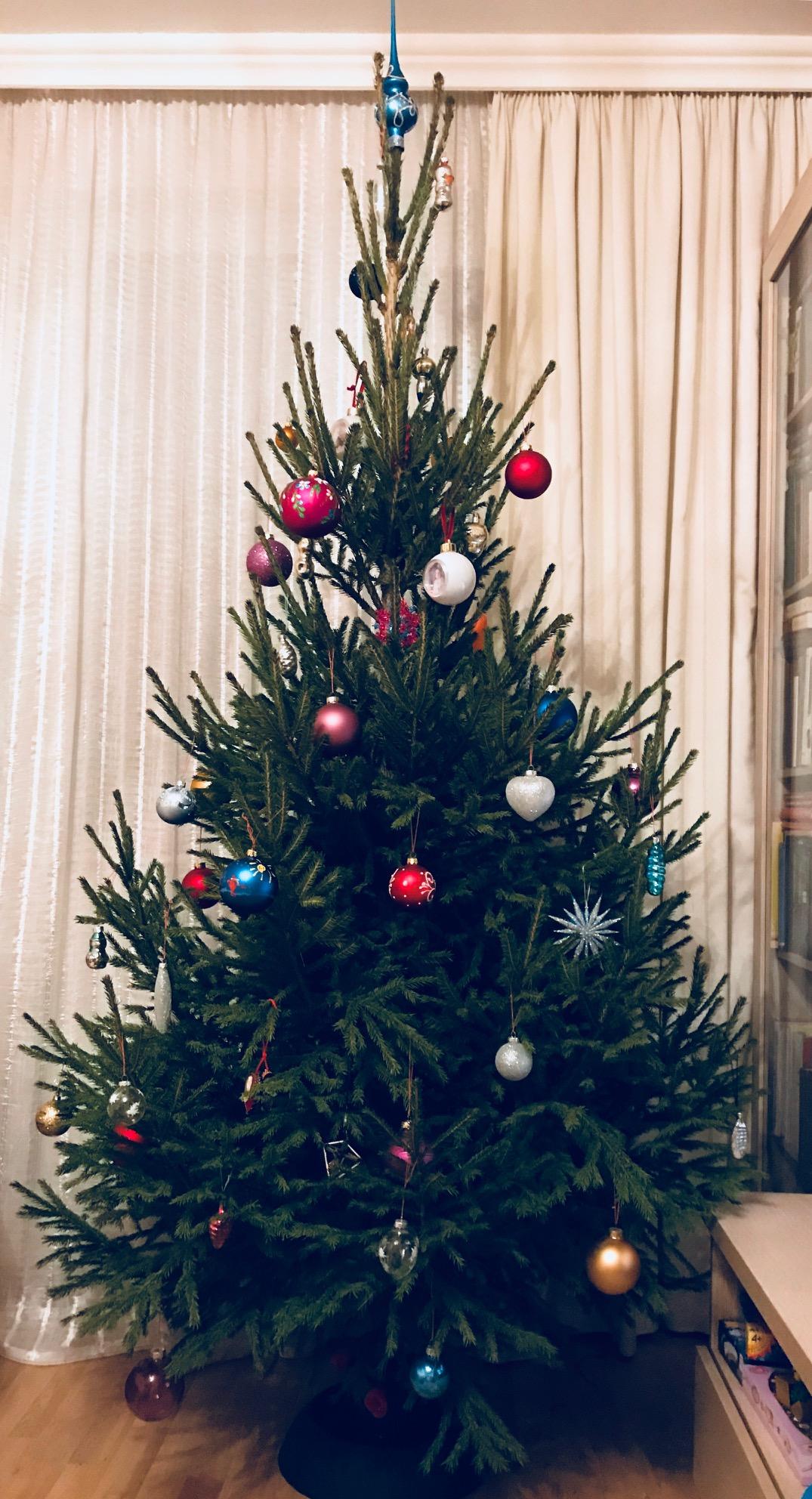 Скромна и шикарна, из чащи лесной . Блиц: новогодняя елка