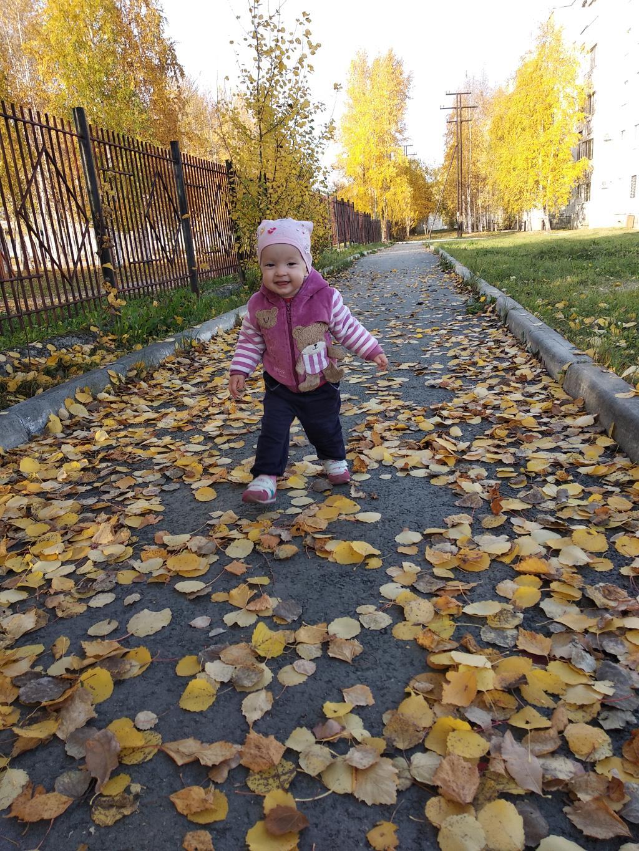 Золотая осень. Лапочка