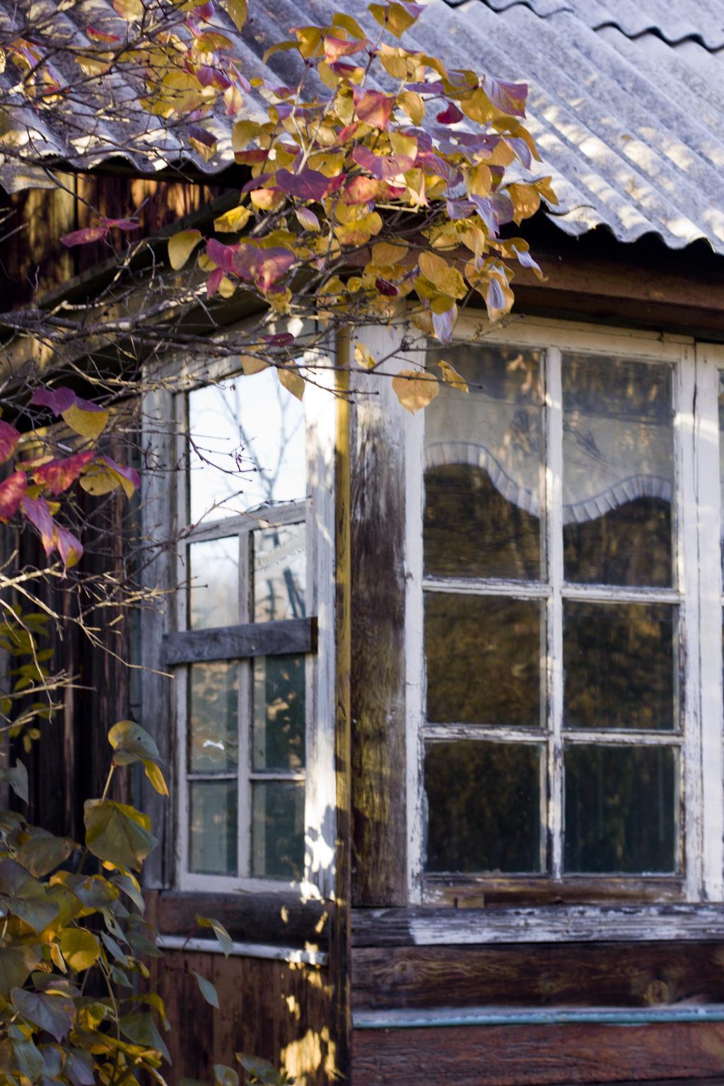 Заброшенная осень.. Блиц: деревня