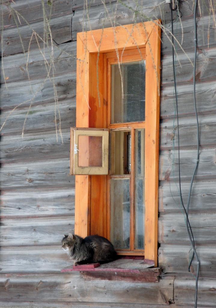 Дверка для кота. Блиц: деревня