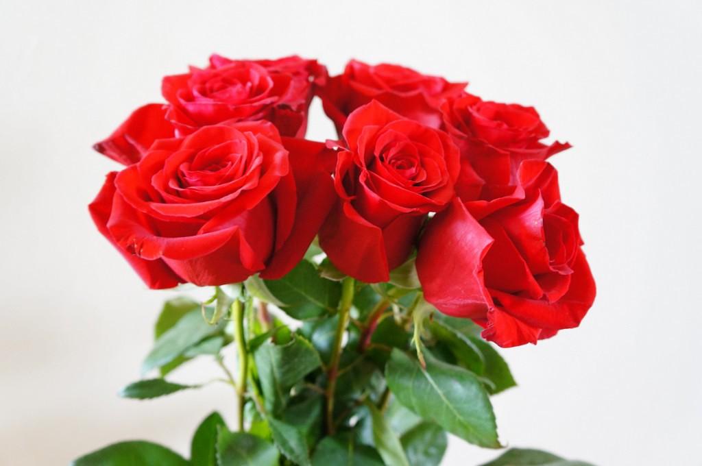 Букет). Блиц: розы