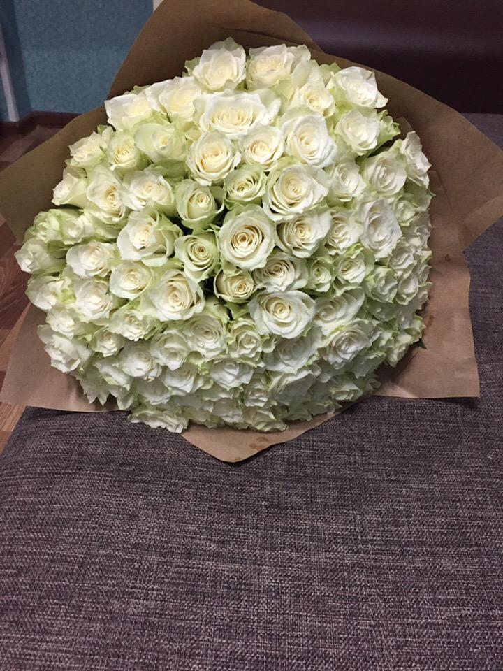 Мои любимые розы. Блиц: розы