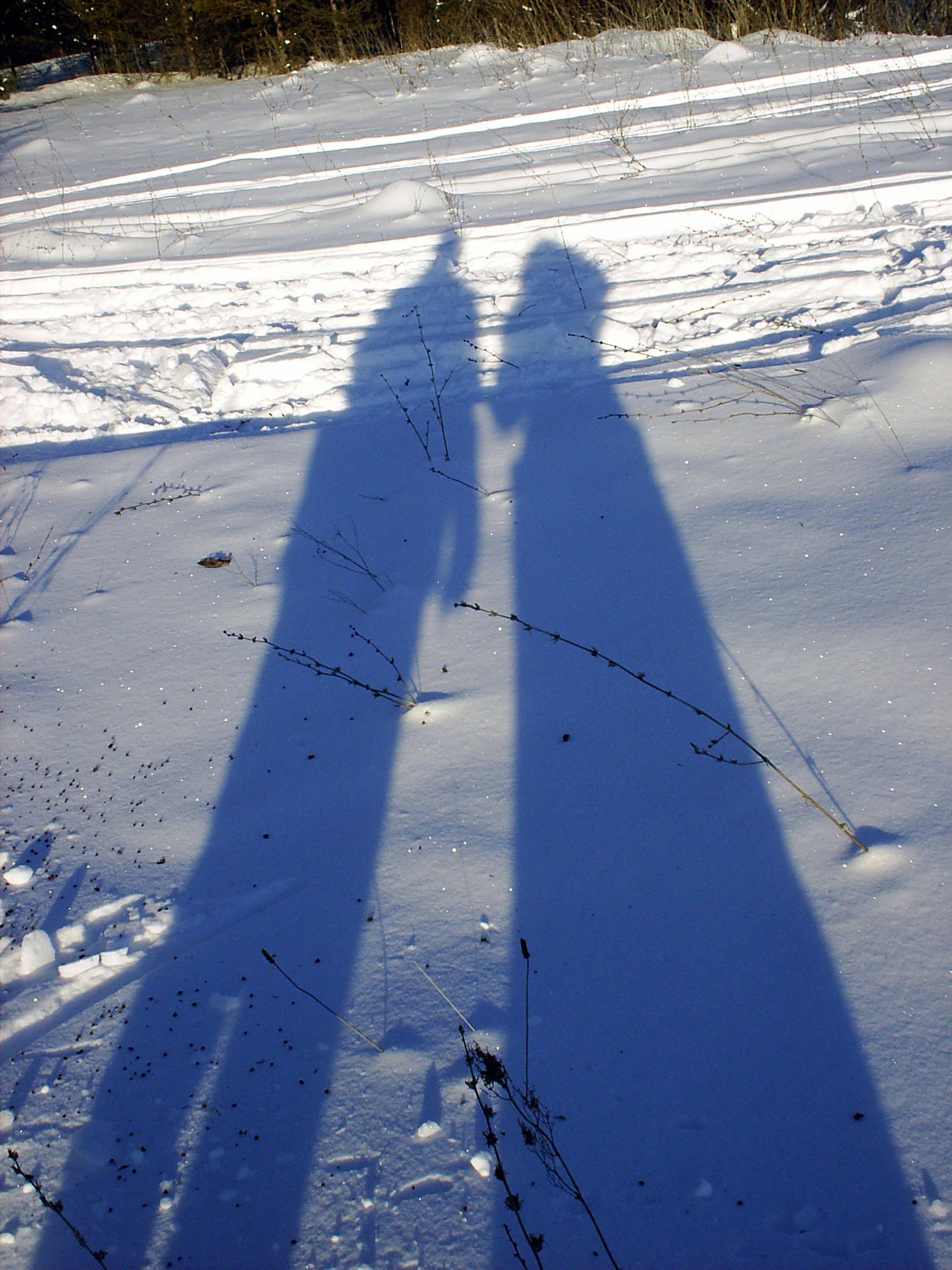 Тени на снегу. Блиц: тени