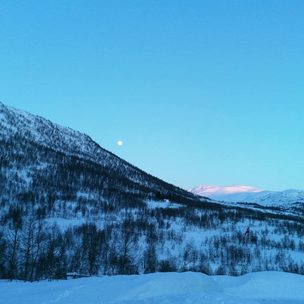 Вечерний зимний пейзаж. Блиц: здравствуй, зима!