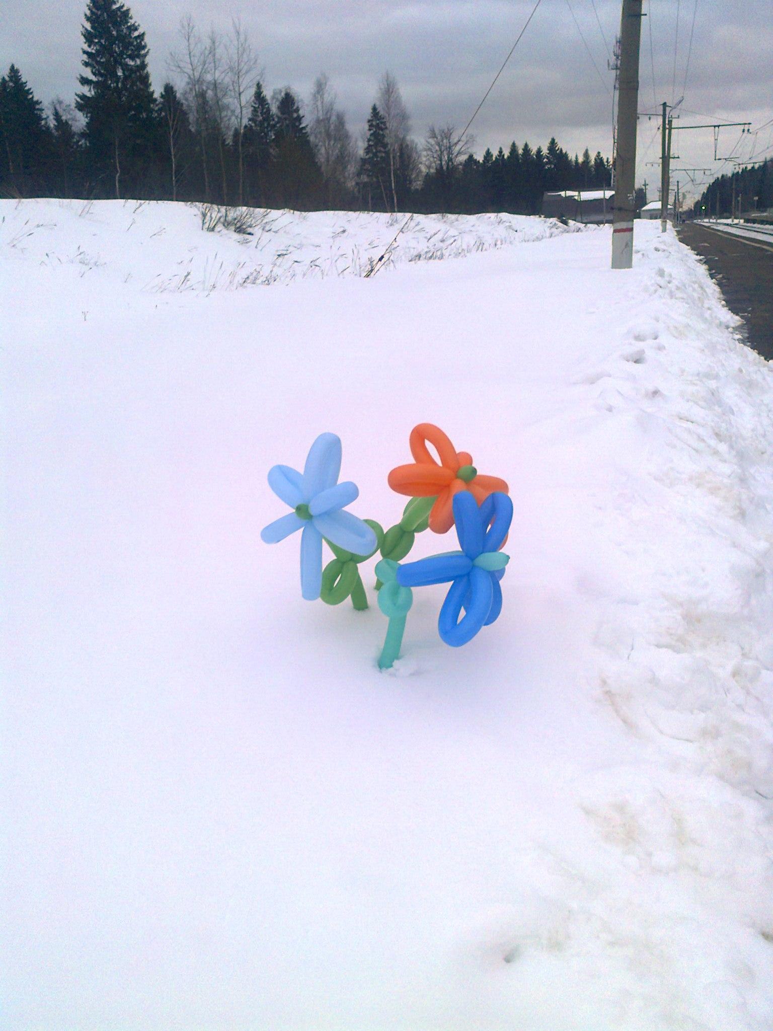 Блиц:здравствуй,зима!. Блиц: здравствуй, зима!