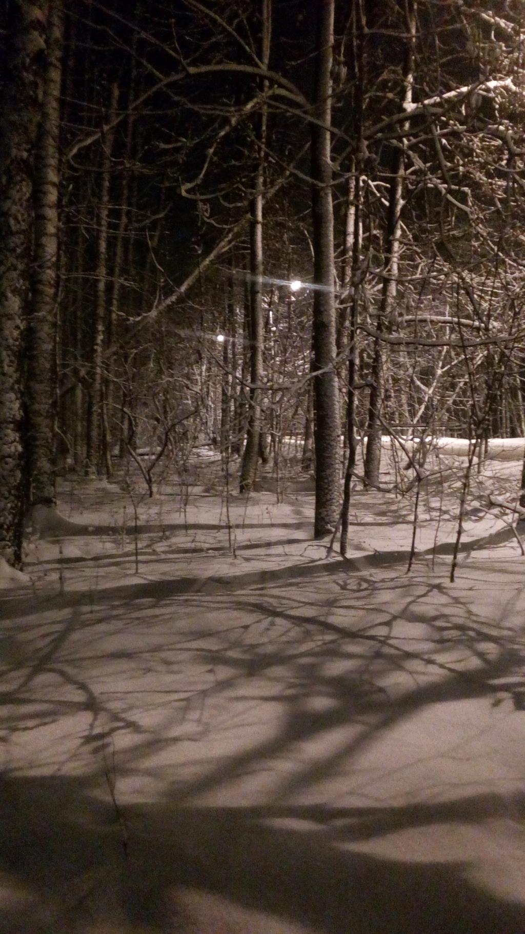 Тени. Блиц: здравствуй, зима!