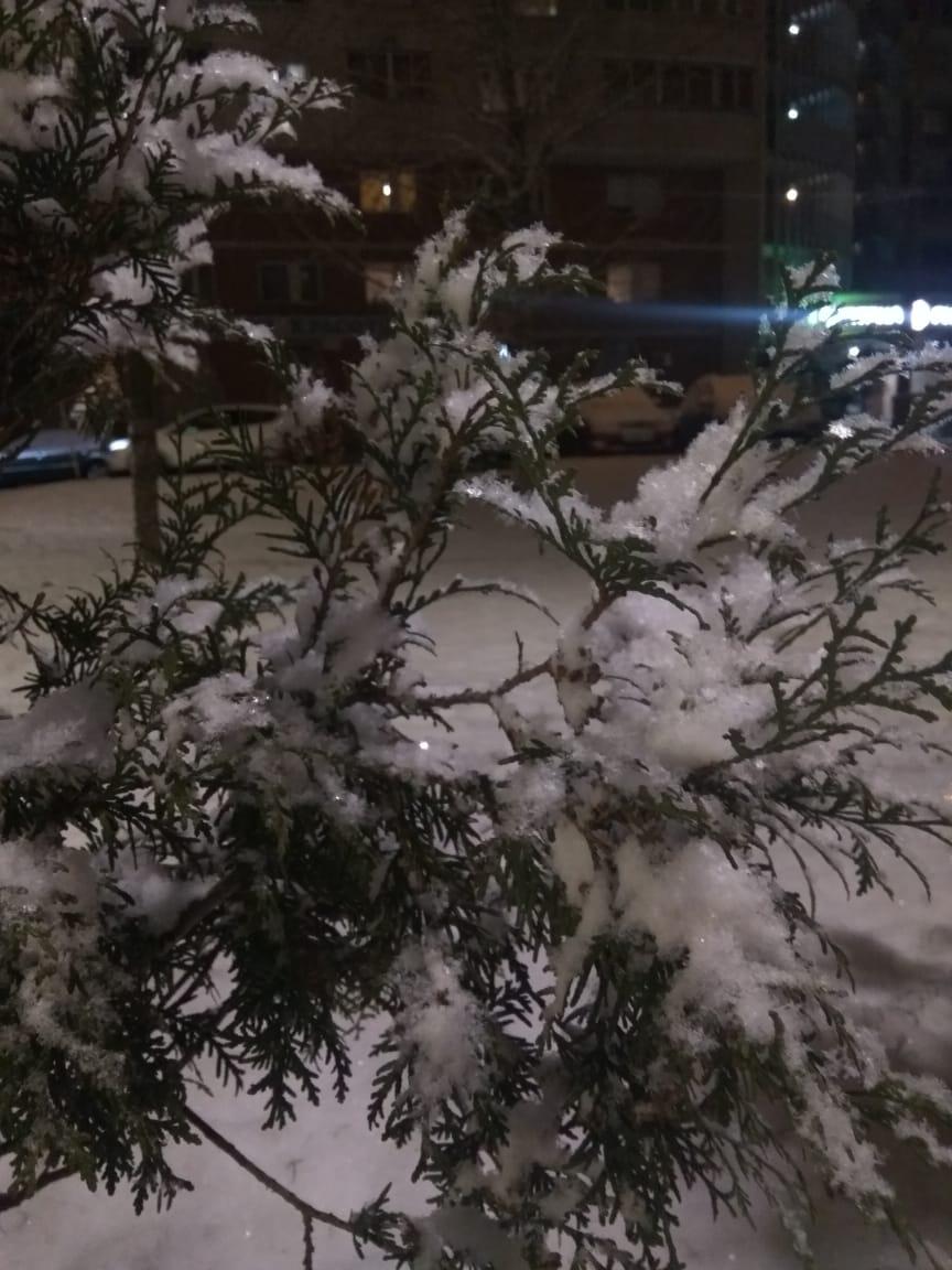 В БЕЛОМ НАРЯДЕ..... Блиц: здравствуй, зима!