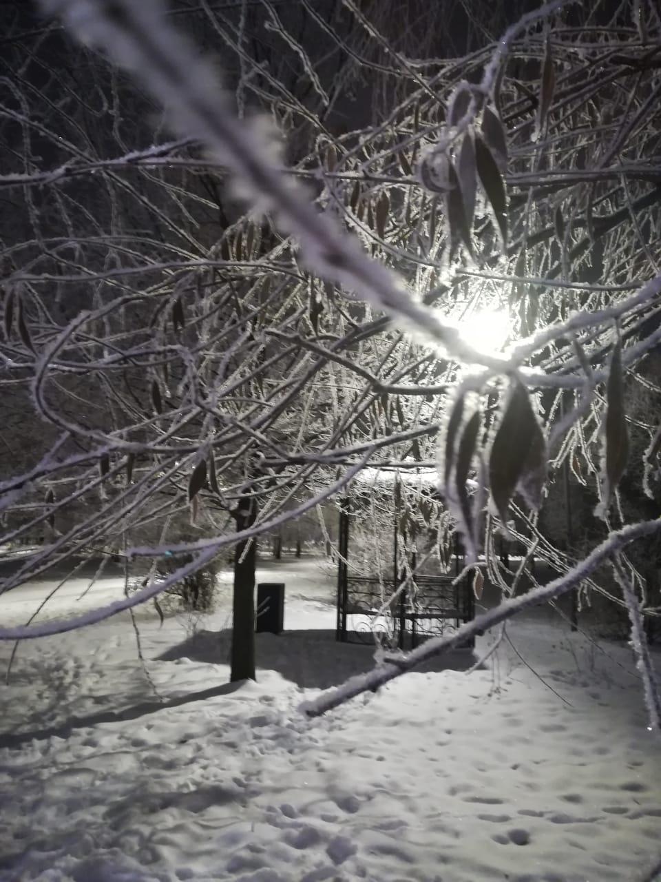 Морозное утро. Блиц: здравствуй, зима!