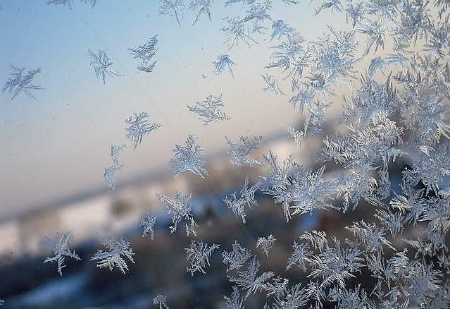 Иней. Блиц: здравствуй, зима!