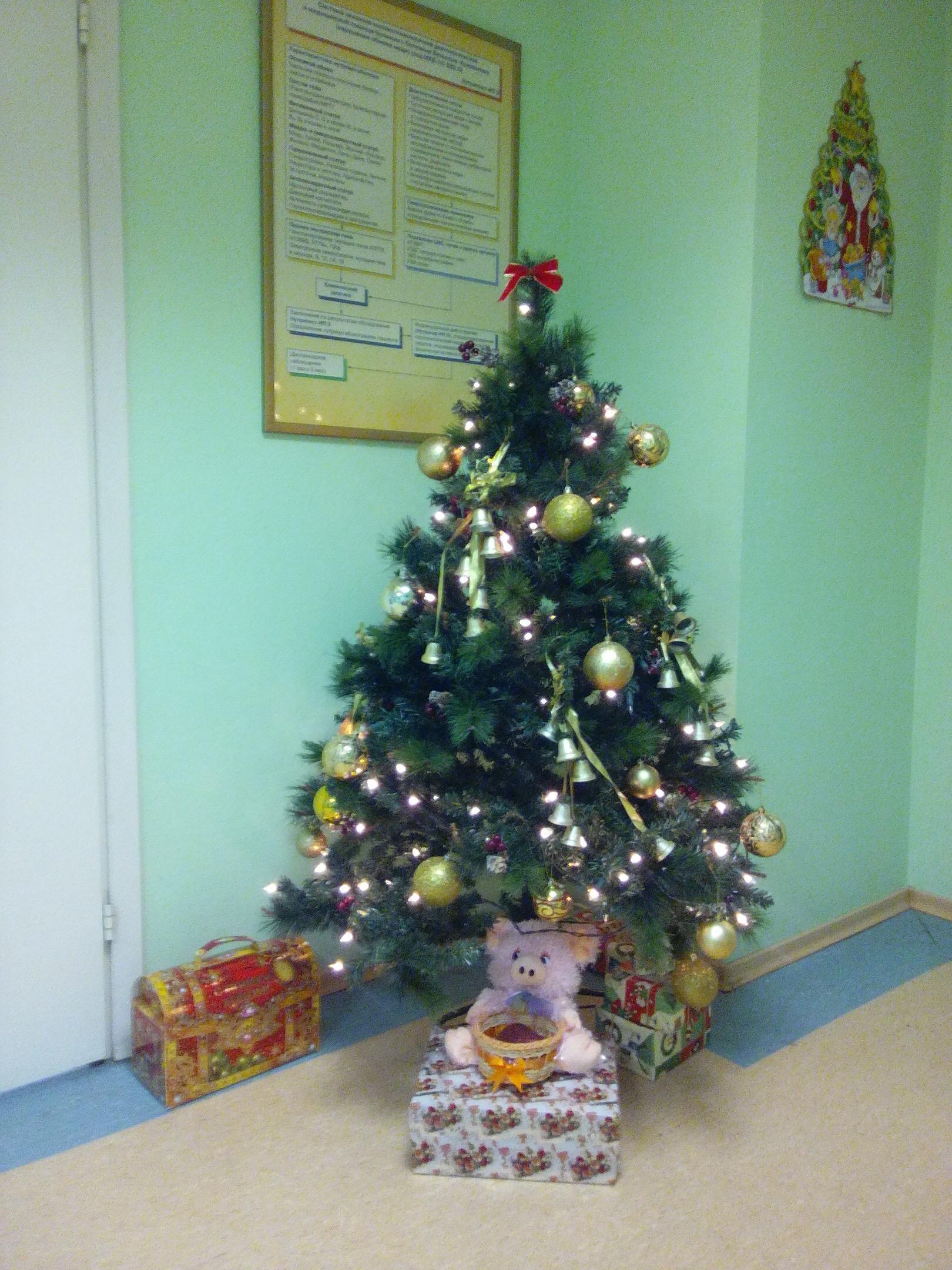 Такая елочка радует нас в отделении терапии!. Блиц: Ну и елка!