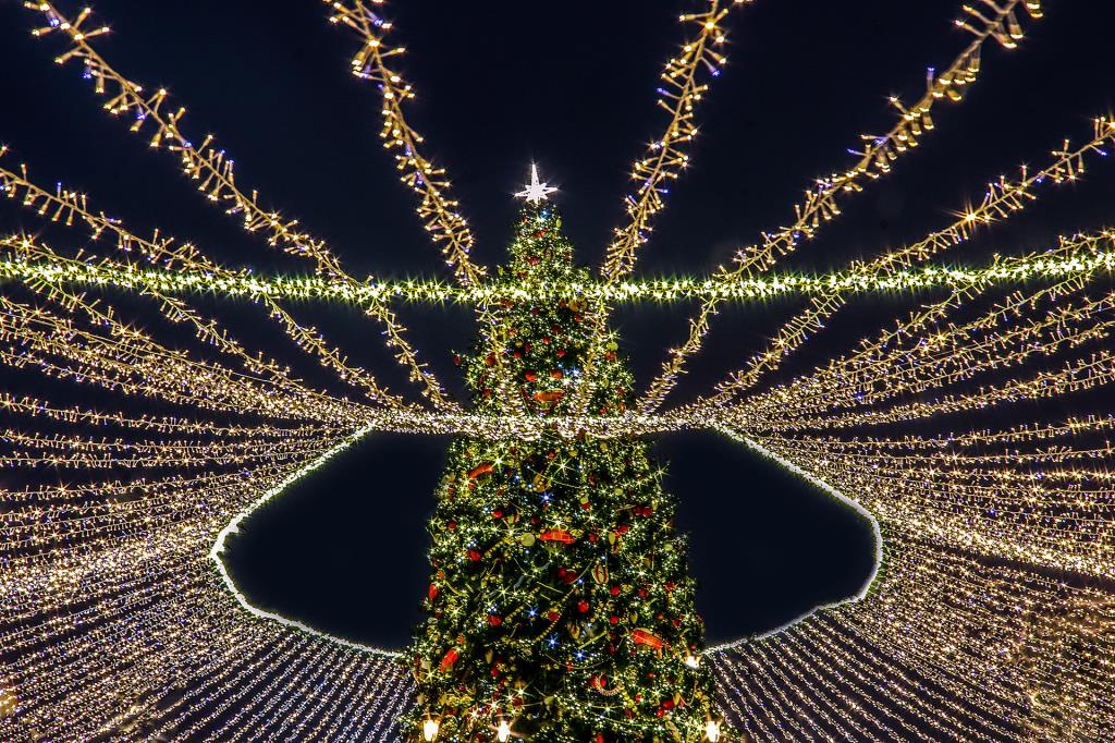 Ёлка на Красной площади в Москве. Блиц: Ну и елка!