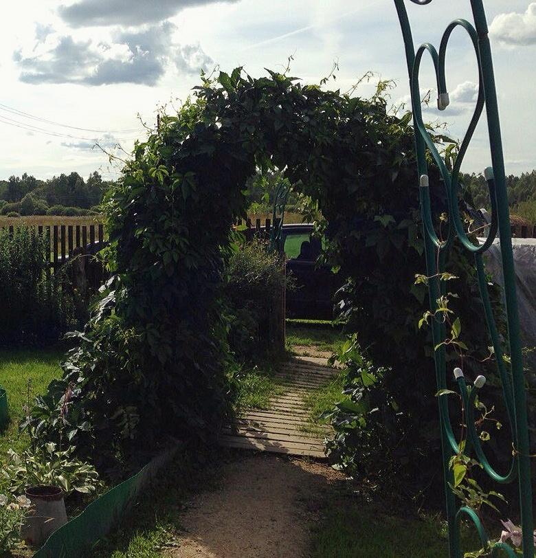 Арка нашей мамочки! . Блиц: арки и ворота