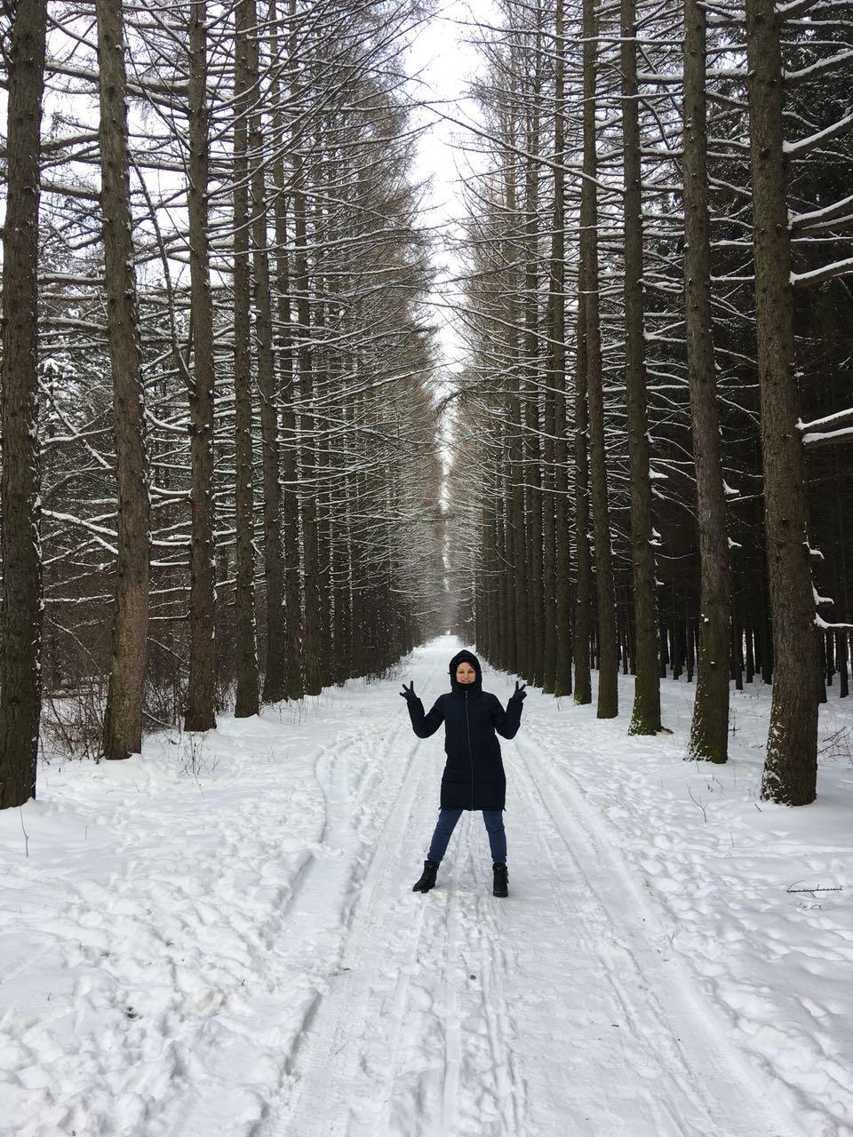 Зима - зимушка. Зимний образ