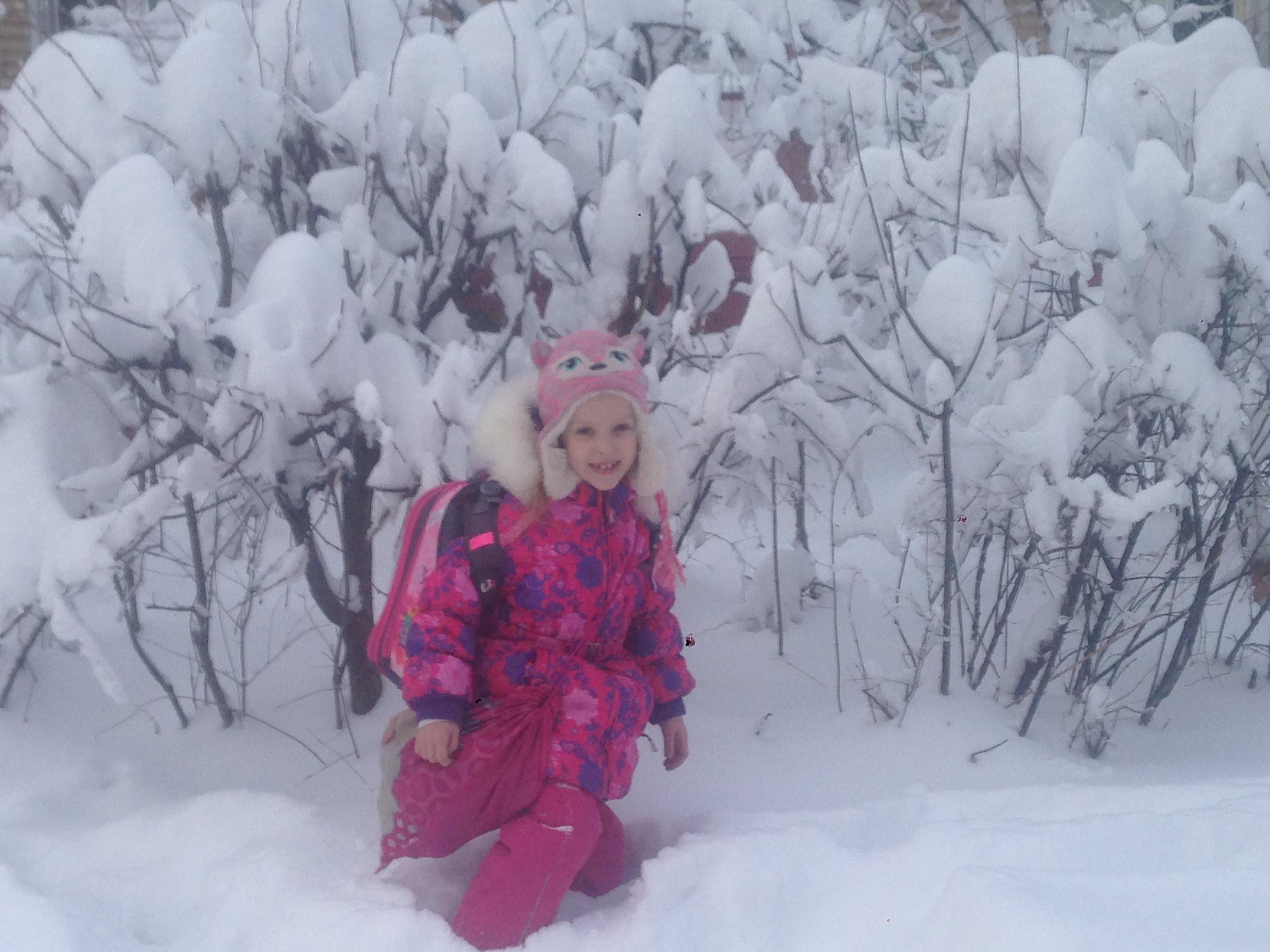 Снежная сказка. Зимний образ