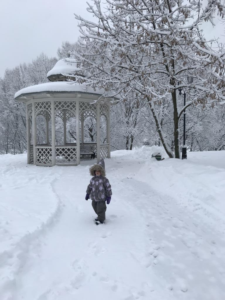 Полиночка в зимней сказке!. Зимний образ