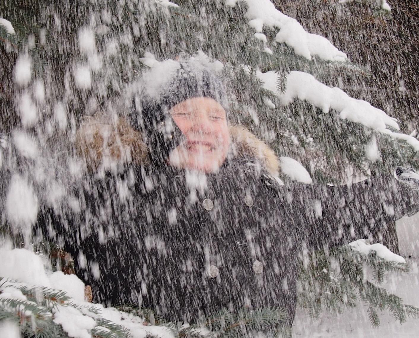 зимнее настроение. Зимний образ