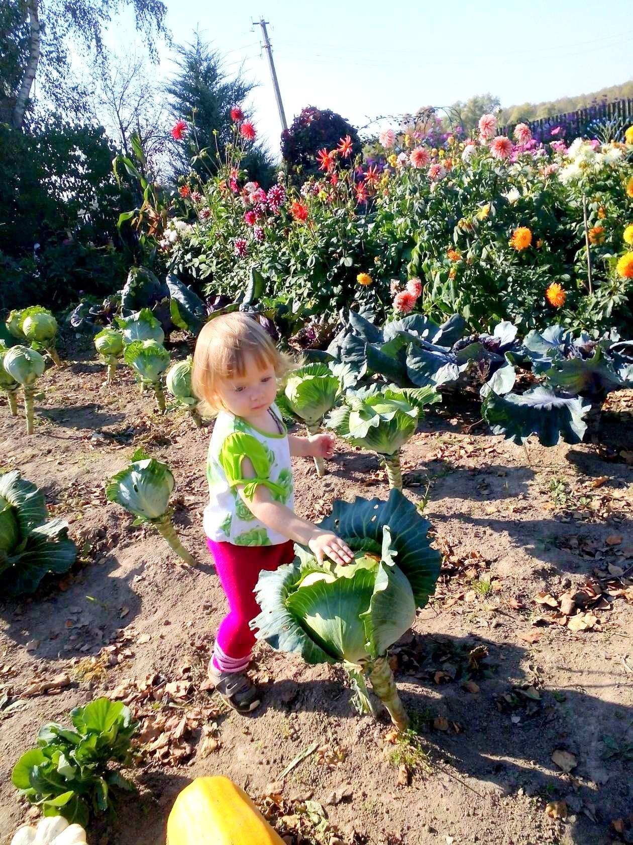 Пора собирать урожай!.. Олеся в деревне у бабушки). Открываем мир!