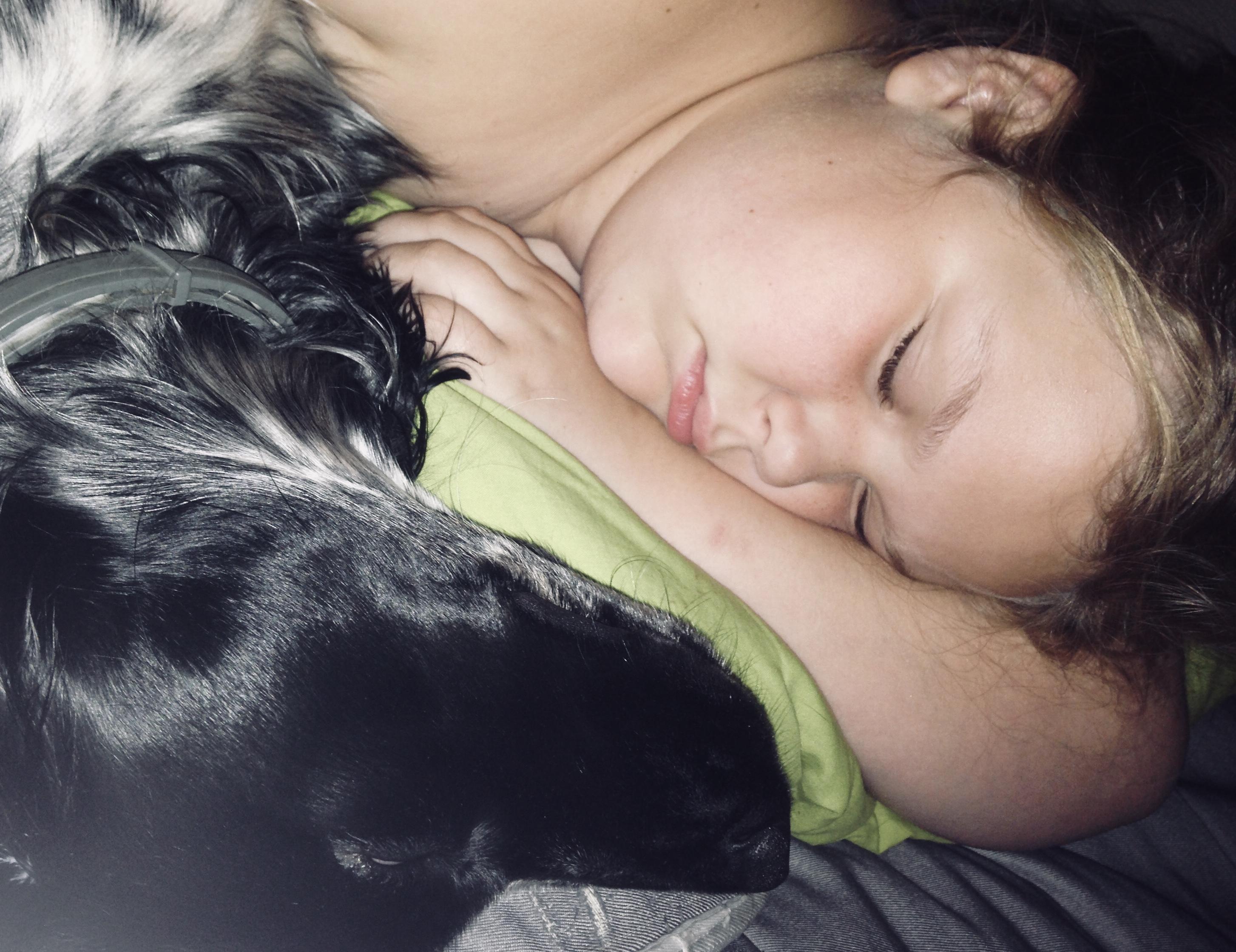 Спят Мои Детки.... Спокойной ночи! Кто спит слаще всего?