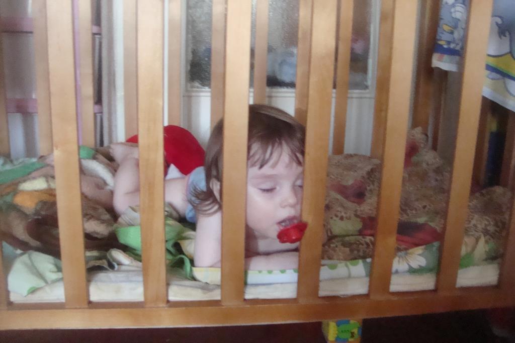 «Спокойной ночи! Кто спит слаще всего?». Спокойной ночи! Кто спит слаще всего?
