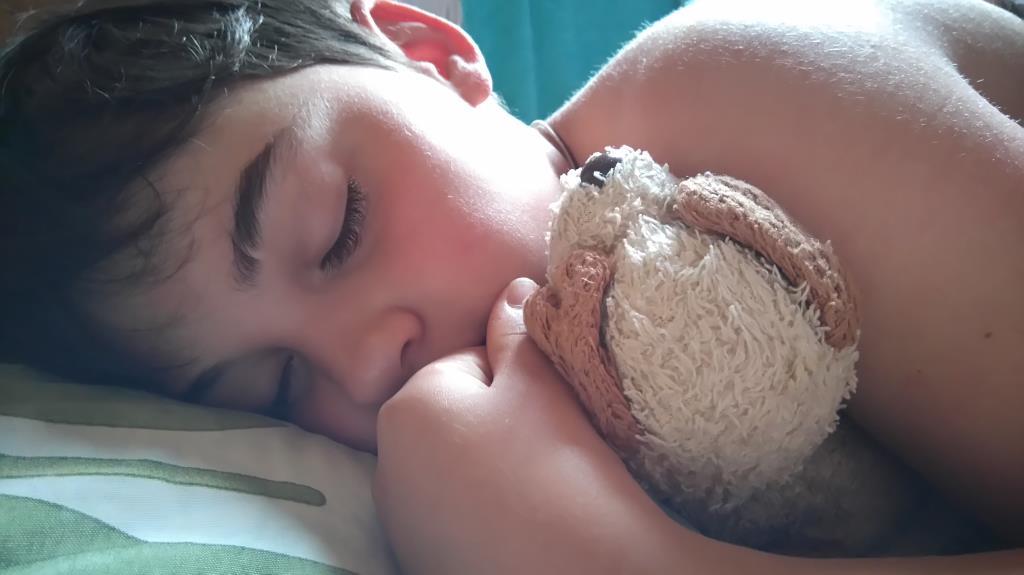 Добрые сны.. Спокойной ночи! Кто спит слаще всего?