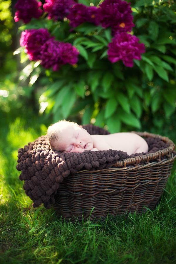 Летний сон. Спокойной ночи! Кто спит слаще всего?