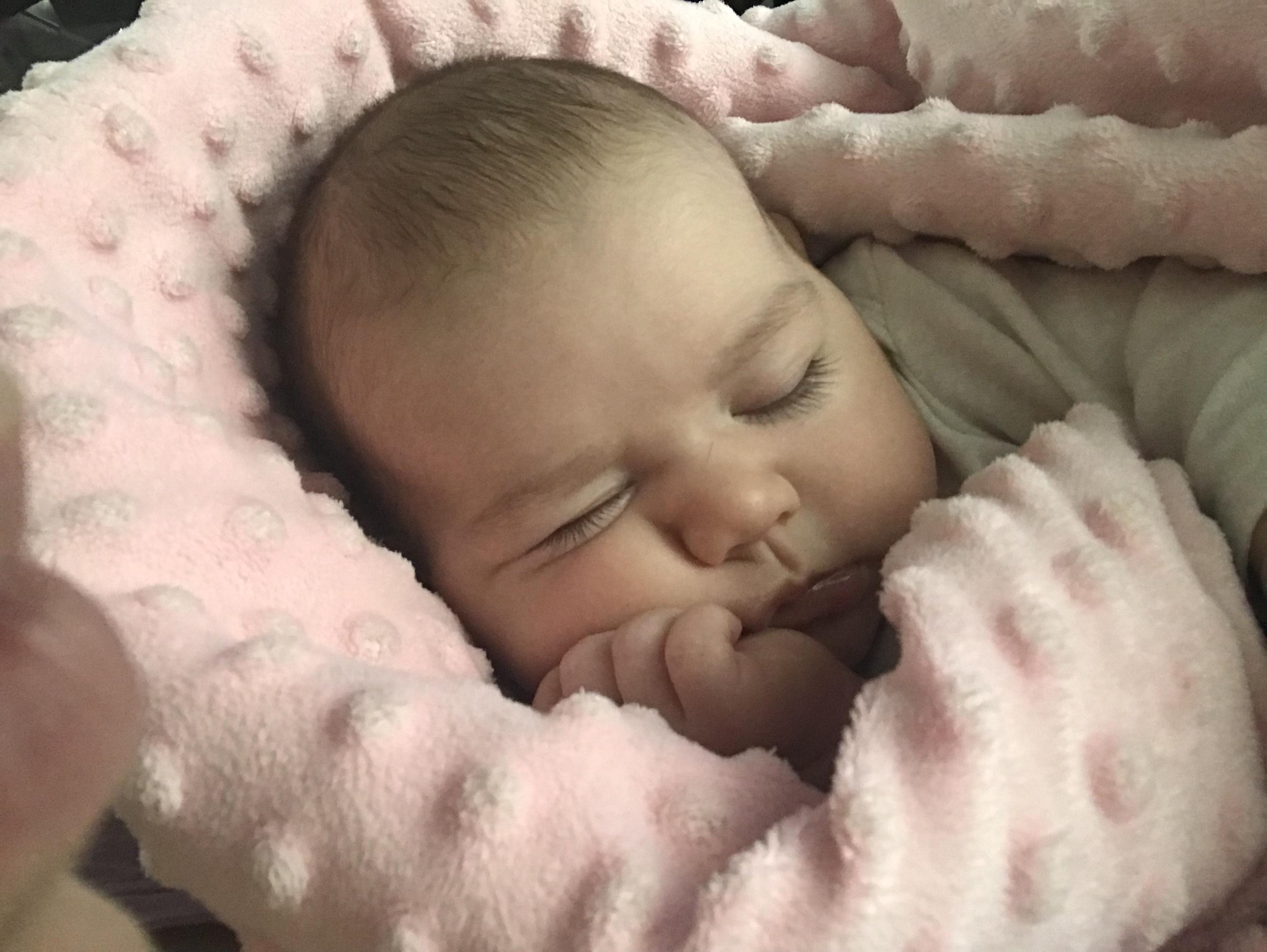 Мой маленький мыслитель. Спокойной ночи! Кто спит слаще всего?