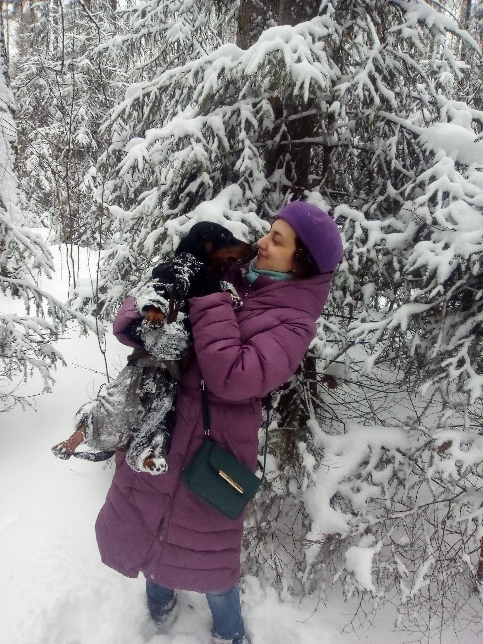 Я и Аполлон в лесу. Зимний образ