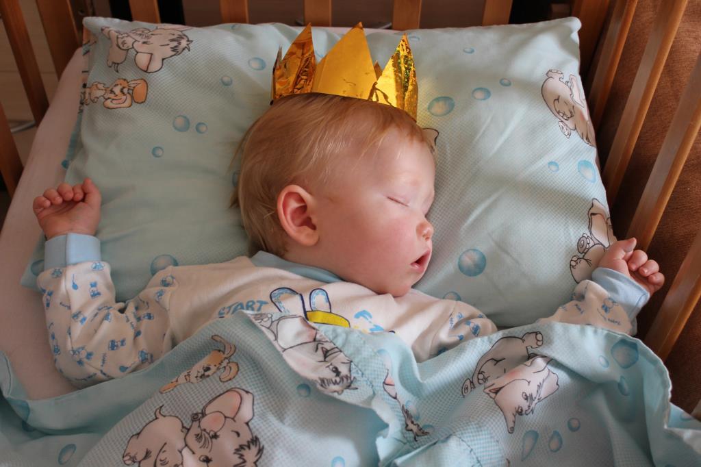 Царь почивать изволил!. Спокойной ночи! Кто спит слаще всего?