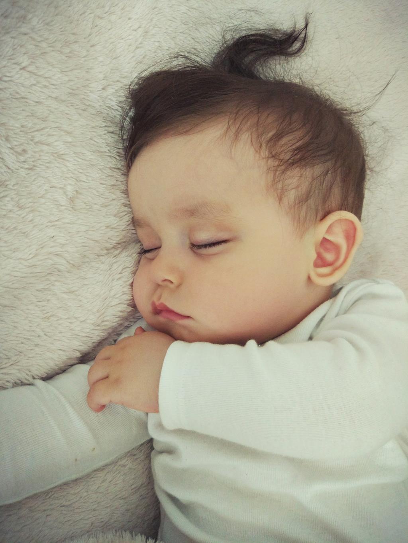 Сплюша. Спокойной ночи! Кто спит слаще всего?